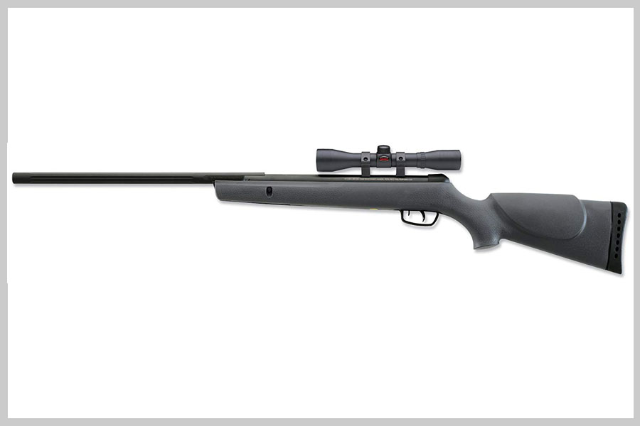 GAMO Big Cat .22 Caliber Air Rifle Review